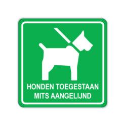bord_honden_aangelijnd